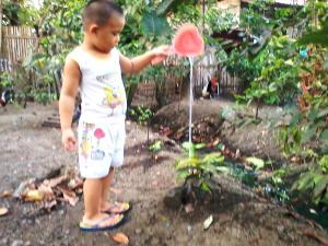 watertheplant